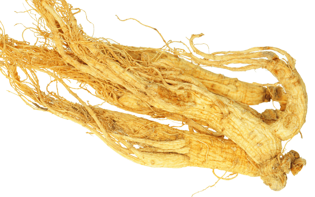 New Study: Ginseng Found to be Effective Against Influenza