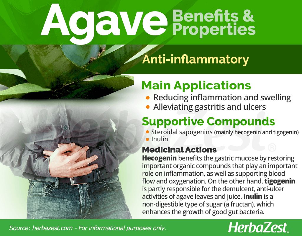 Agave Benefits and Properties