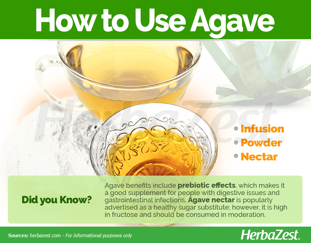 How to Use Agave