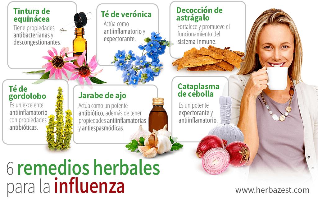 6 remedios herbales para la influenza