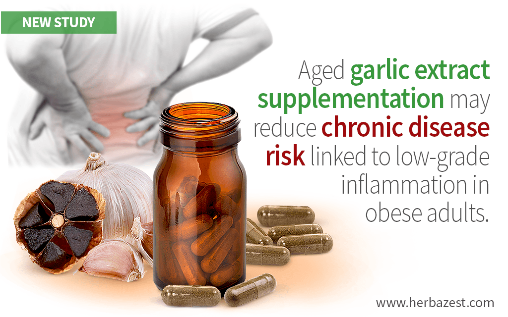 Garlic's Effects on Inflammation and Immunity Evaluated by a Study