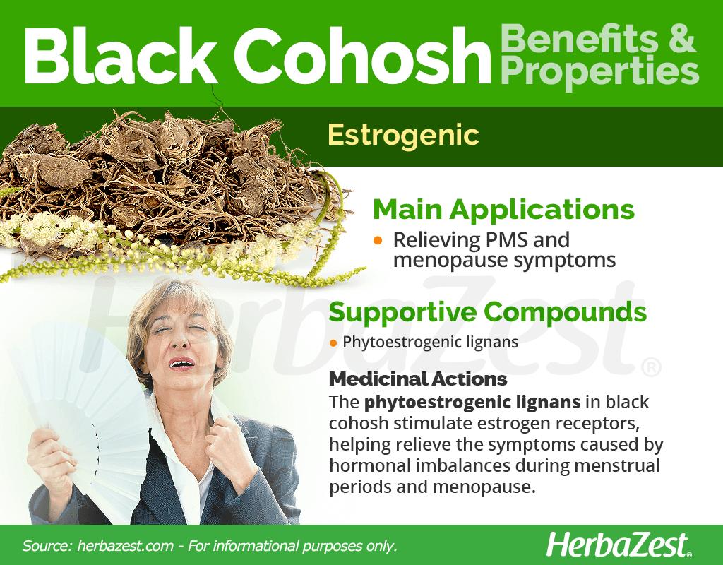 Black Cohosh | HerbaZest