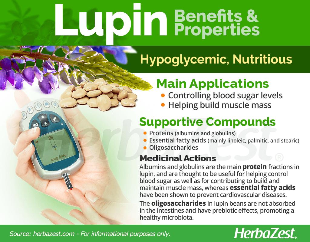 Lupin Benefits and Properties