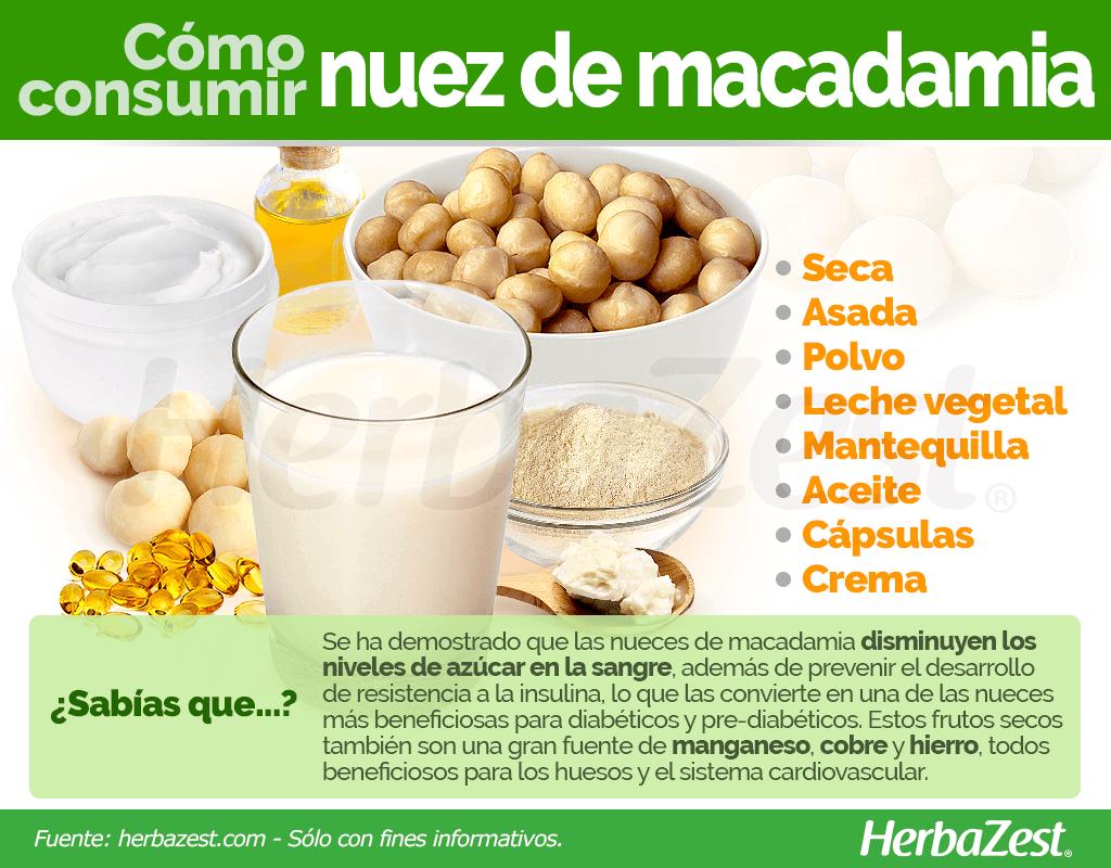 Cómo consumir nuez de macadamia