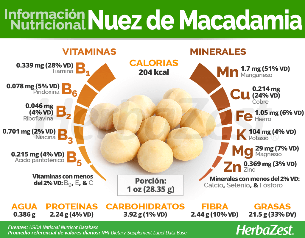 Información nutricional de la nuez de macadamia