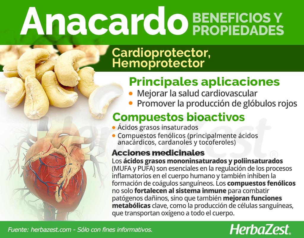 Beneficios y propiedades de los anacardos