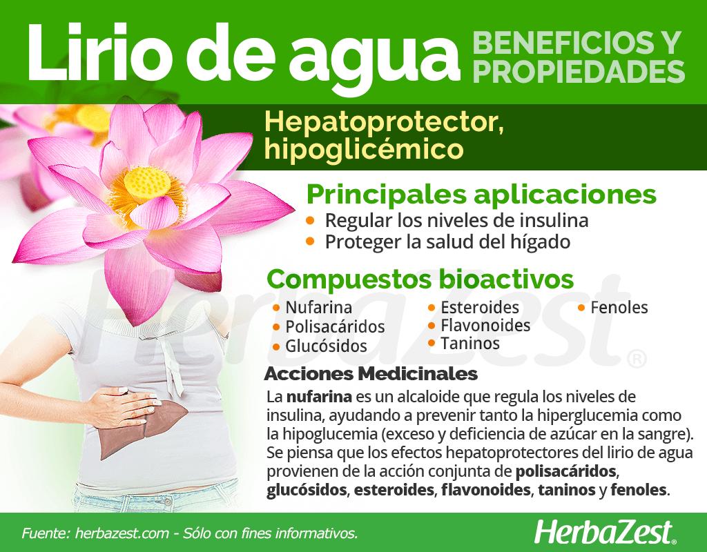 Beneficios y propiedades del lirio de agua