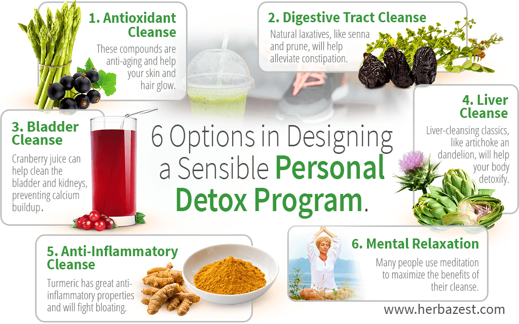 6 Options in Designing a Sensible Personal Detox Program