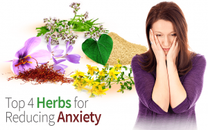 Top 4 Herbs for Reducing Anxiety