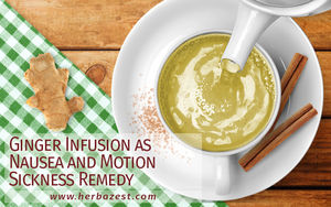 Ginger Infusion as Nausea and Motion Sickness Remedy