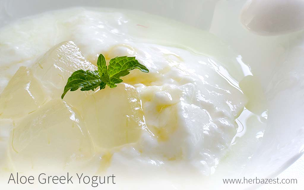 Aloe Greek Yogurt
