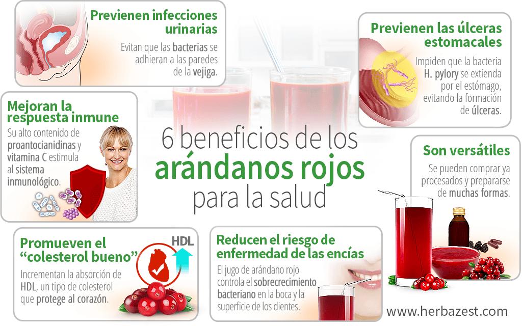 6 beneficios de los arándanos rojos para la salud