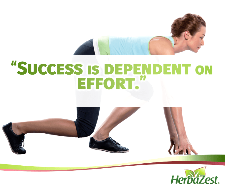 Quote: Success is Dependent on Effort