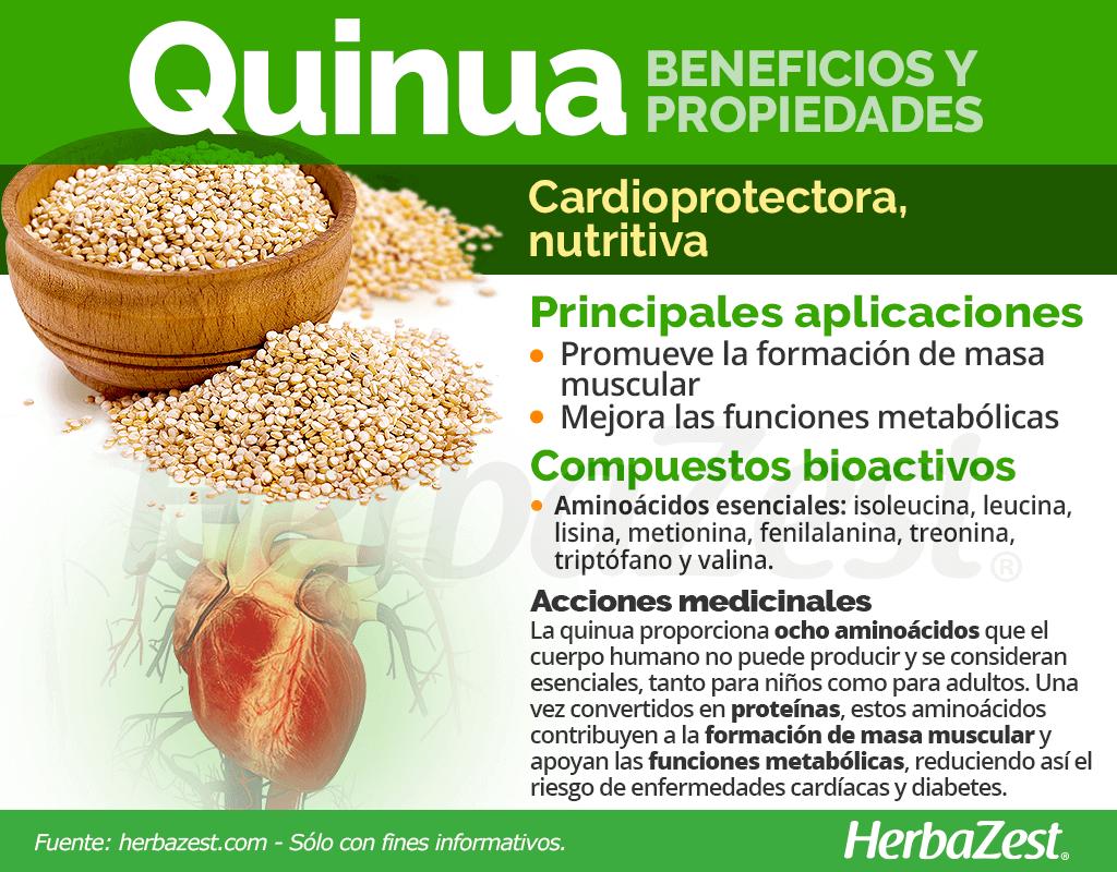 Beneficios y propiedades de la quinua