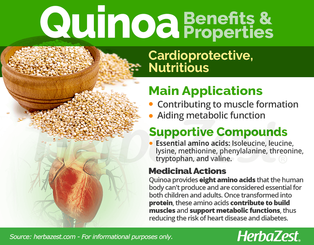 Quinoa Benefits & Properties