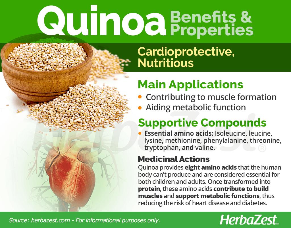 Quinoa Benefits & Properties