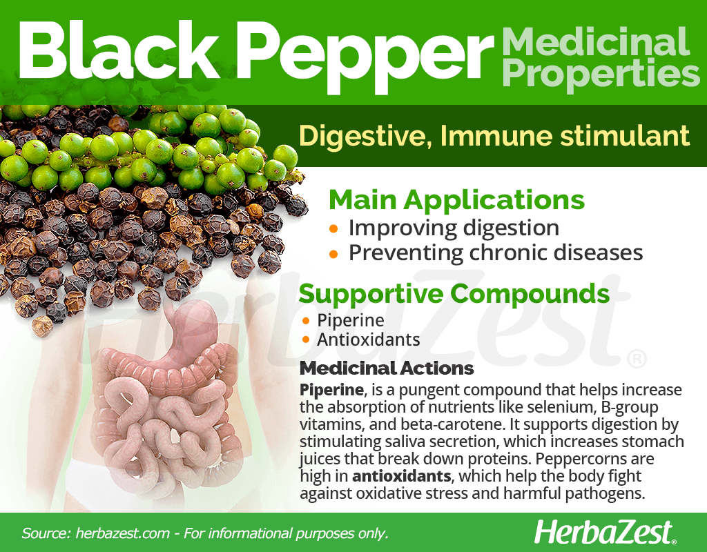 Black Pepper Medicinal Properties