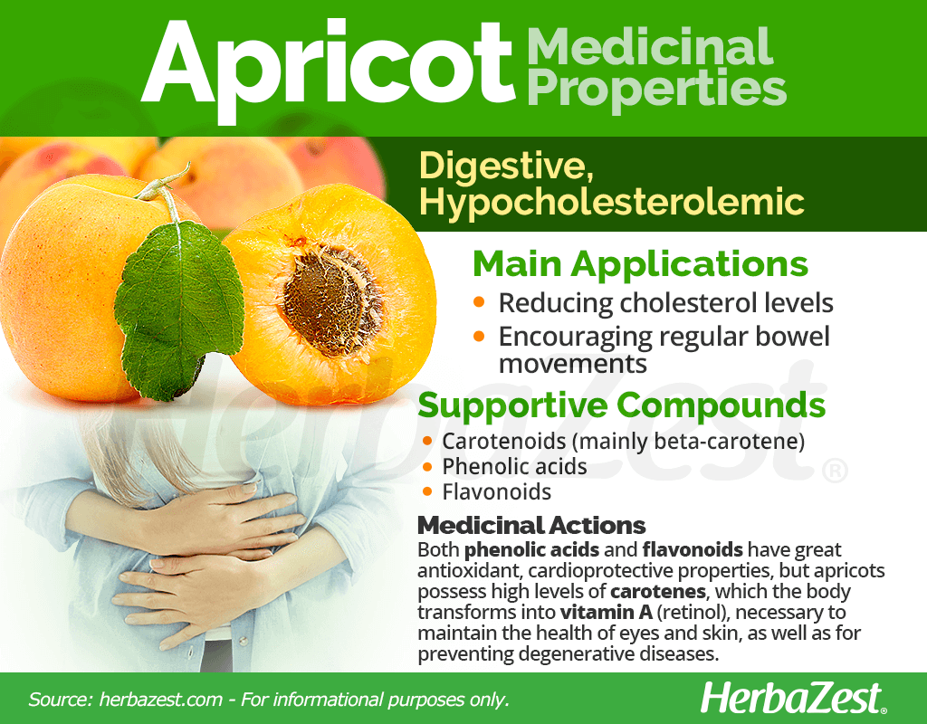 Apricot stone: the benefits and harm. Properties of apricot pits 53