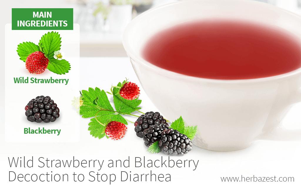 Wild Strawberry and Blackberry Decoction to Stop Diarrhea