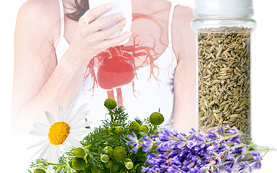 Popular Herbs for High Blood Pressure Share the Same Underlying Mechanism, Study Reveals