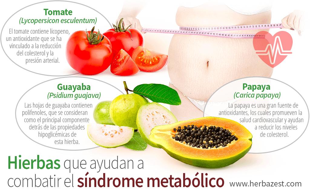 Hierbas que ayudan a combatir el síndrome metabólico