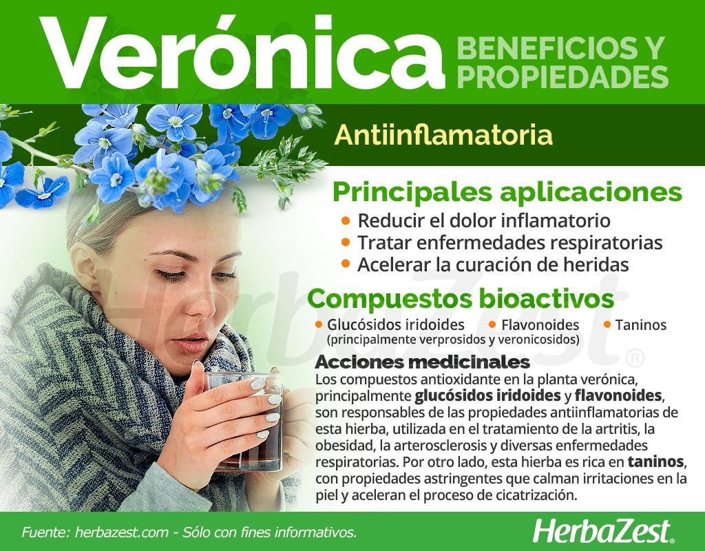 Beneficios y propiedades de la verónica