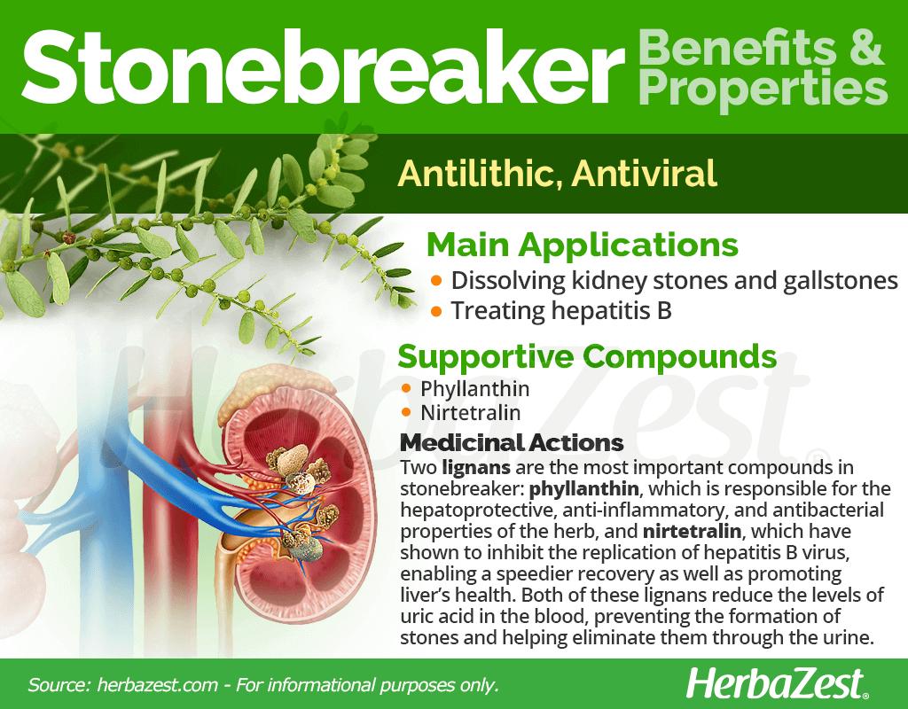 Stonebreaker Benefits and Properties