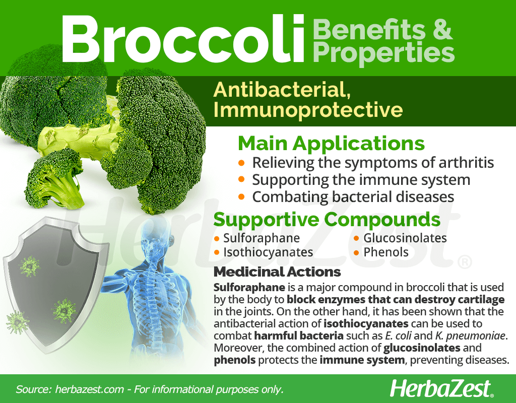 Broccoli Benefits and Properties