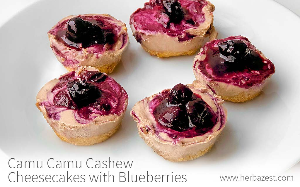 Camu Camu Cashew Cheesecakes with Blueberries