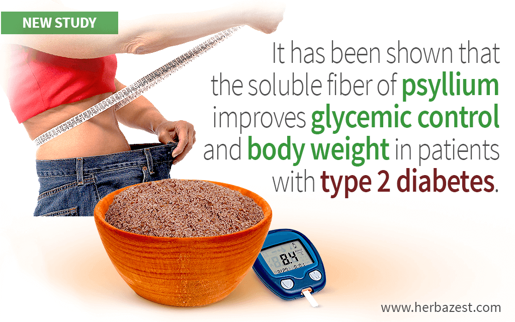 Soluble Fiber from Psyllium Has Proven Helpful in Managing Blood Sugar and Body Weight