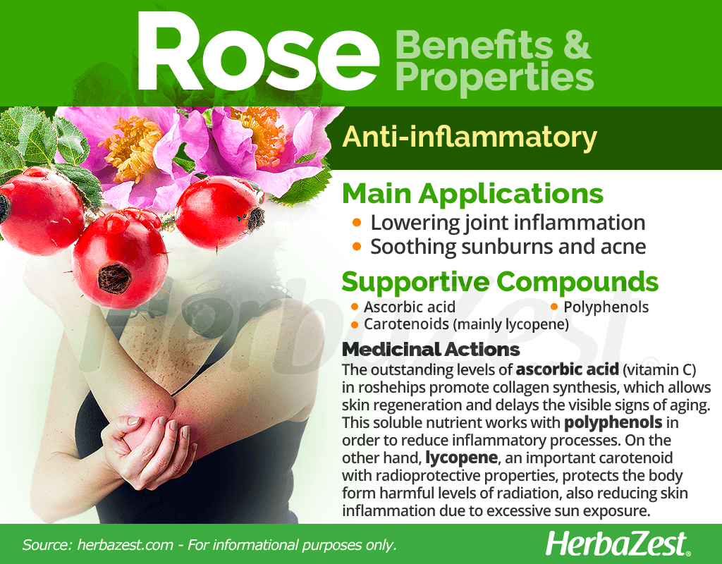 Rose Benefits and Properties