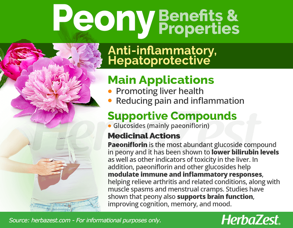Peony Benefits and Properties
