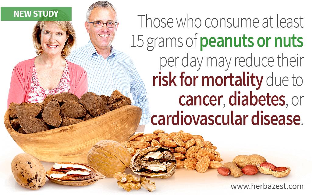 Nut Consumption May Prolong Life