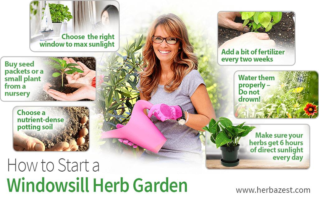 How to Start a Windowsill Herb Garden