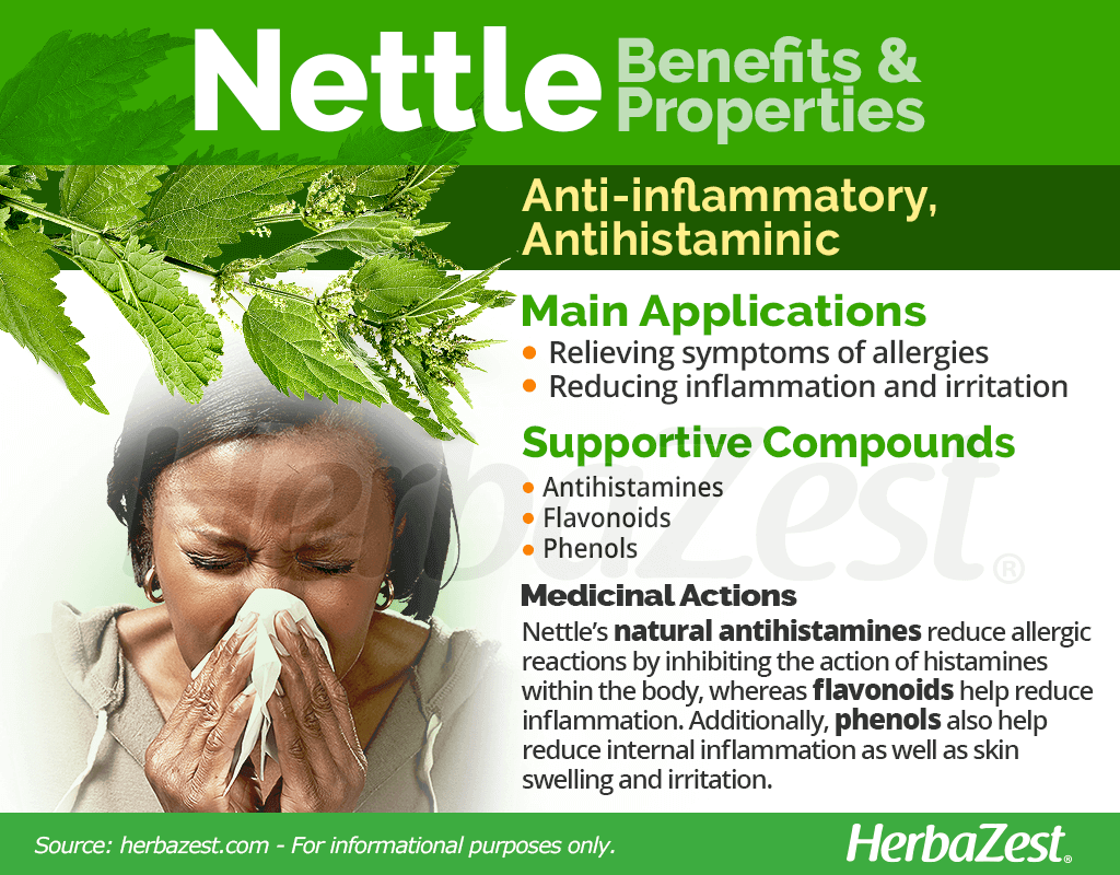 Nettle Benefits and Properties