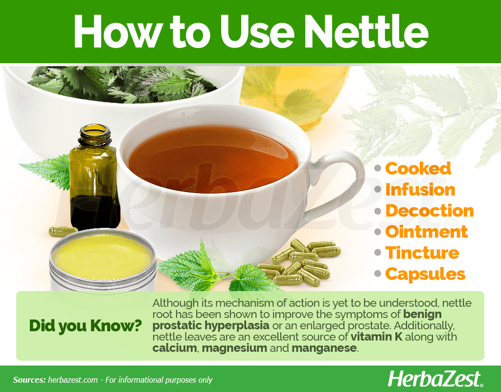 How to Use Nettle