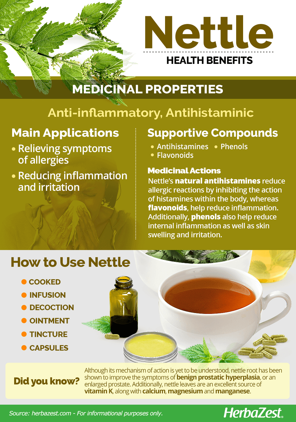 All About Nettle