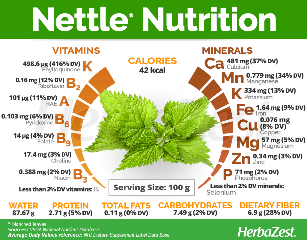 Nettle Nutrition Facts