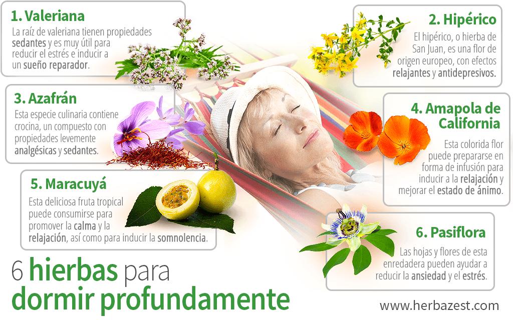 6 hierbas para dormir profundamente